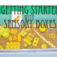 Getting Started With Sensory Boxes