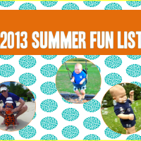 2013 Summer Fun List