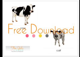 nomenclature cards montessori farm animal cards free printable download